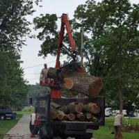 Moving big logs quickly