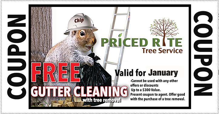 Priced Rite Tree Promotion. Free gutter cleaning with Tree Removal.